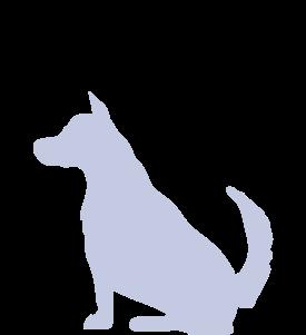 Bild für Kategorie Kaninchen Dachshund  - Langhaar